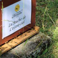 Dossier: Avis de décès de l'abeille et bienfaits du miel